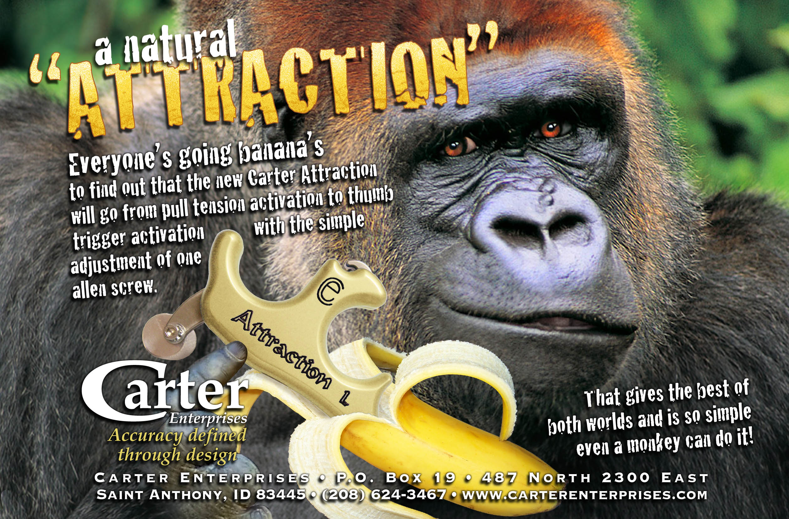 Carter Attraction